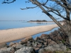 Sandy Hook State Park - Debra Partesi
