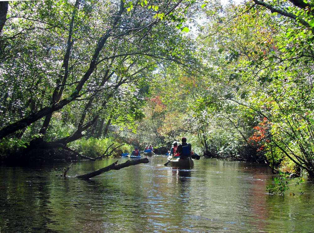 Pinelands Preservation Alliance Releases Annual State of the Pinelands Report