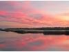 Wading River - Albert Horner