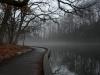 Echo Lake Park - Joanne Devine