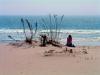 Ocean City - Charles Lamielle