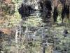 Allaire State Park - Duane Bowker
