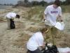 COA - Beach Sweeps
