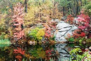 Heaters-Pond-Ogdensburg-NJ-10-11-141215-pm